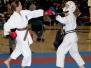 2011 USA Wado-Ryu Karate Championships